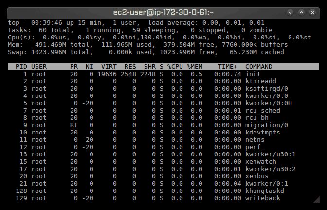 Strip down Amazon Linux EC2 to maximize available RAM