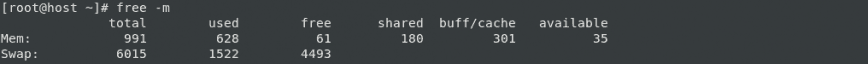 RAM Upgrade: free -m